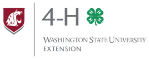 Logo: 4-H Washington State University Extension